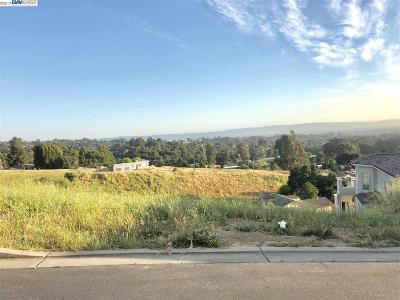 Hayward Residential Lots & Land New: 24545 Karina St