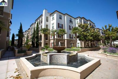 Dublin Condo/Townhouse New: 3465 Dublin Blvd #111