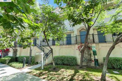 Milpitas Condo/Townhouse For Sale: 768 Hammond Way