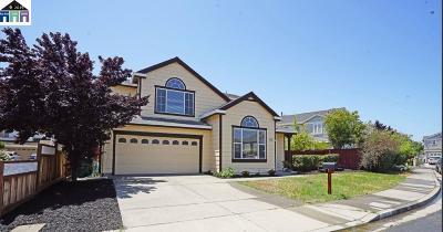 Hayward Single Family Home For Sale: 28821 Tucker Street