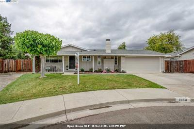 Pleasanton Single Family Home New: 6853 Massey Ct