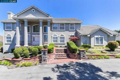 Walnut Creek Single Family Home New: 41 Walnut View Pl
