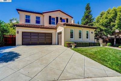 Pleasanton Single Family Home New: 7321 Hickorywood Ln