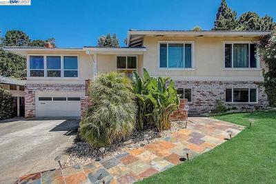 Hayward Single Family Home New: 3492 Pinewood Dr