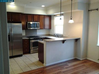 Contra Costa County Condo/Townhouse New: 2741 Holly St