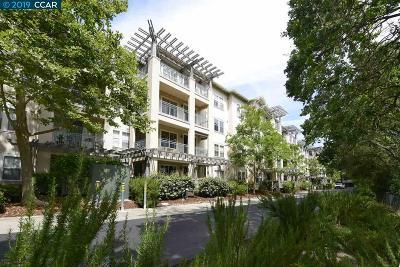 Walnut Creek CA Condo/Townhouse New: $895,000