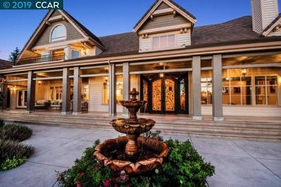 Alamo CA Single Family Home For Sale: $2,700,000