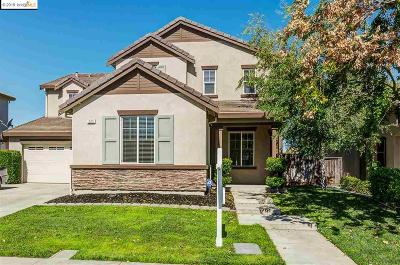 Oakley Single Family Home For Sale: 225 Hearthstone Cir