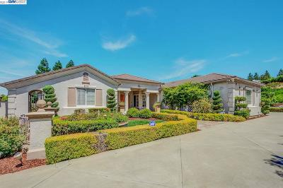 Pleasanton Single Family Home For Sale: 6023 Laurel Creek Dr