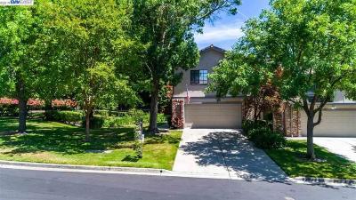 San Ramon Condo/Townhouse For Sale: 176 Canyon Green Pl