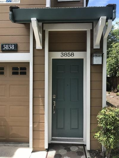 Castro Valley Condo/Townhouse For Sale: 3858 N Canyon Court