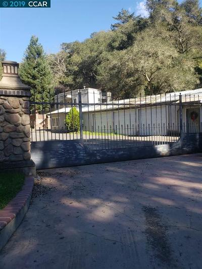Castro Valley Single Family Home Active-Reo: 29600 Palomares Rd