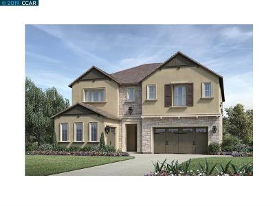 Dublin, Pleasanton, Alamo, Danville, Orinda, San Ramon Single Family Home For Sale: 7087 Tecopah Hills Way