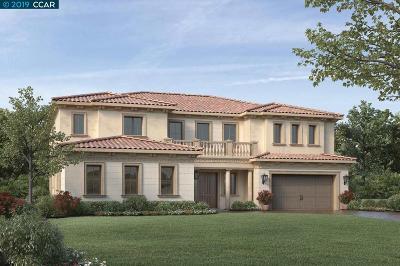 Dublin, Pleasanton, Alamo, Danville, Orinda, San Ramon Single Family Home For Sale: 6190 Massara Street