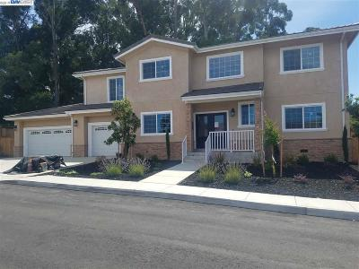 Castro Valley Single Family Home For Sale: 4597 Edwards Lane