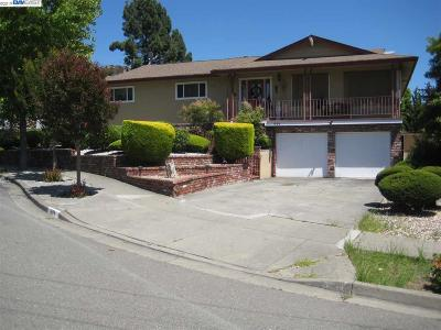 Hayward Single Family Home For Sale: 691 Fiesta Pl