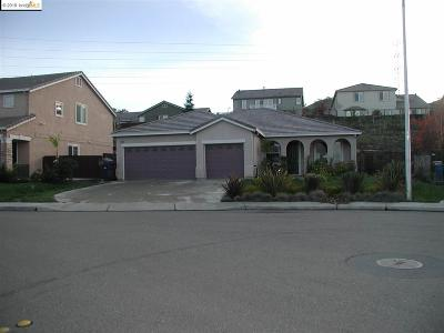 Antioch Single Family Home For Sale: 3940 Kite Way