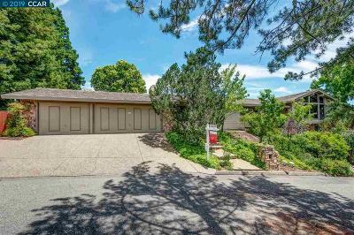 Alamo Single Family Home For Sale: 166 Mountain Canyon Ln