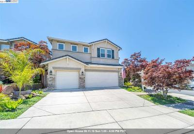 Castro Valley Single Family Home New: 25671 Secret Meadow Ct