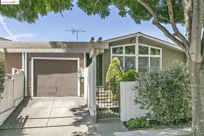 Oakland Single Family Home New: 3723 35th Ave