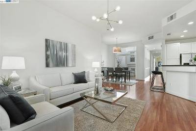 San Francisco Condo/Townhouse For Sale: 1693 19th Avenue