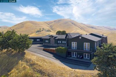 Livermore Single Family Home New: 12400 Morgan Territory Rd