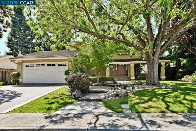 Danville CA Single Family Home New: $1,249,900