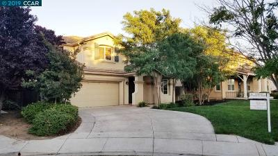 Contra Costa County Rental For Rent: 60 Snowy Egret Ct