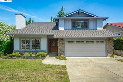 Fremont, Union City, Newark Single Family Home New: 625 Olive Street