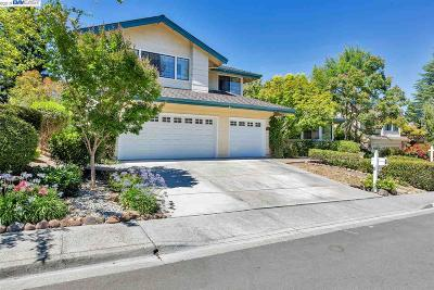 San Ramon CA Single Family Home New: $1,250,000