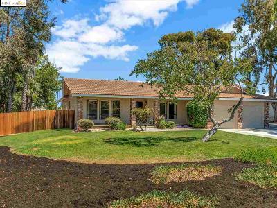 Oakley Single Family Home New: 1100 Kay Ln