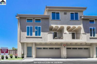 San Lorenzo Condo/Townhouse New: 809 Estancia Court #11