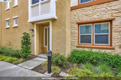 Milpitas Condo/Townhouse For Sale: 1578 Canal St