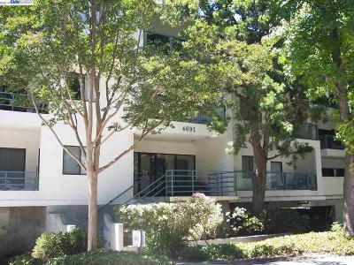 Santa Clara County Condo/Townhouse New: 4691 Albany Circle #145