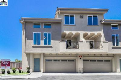 Alameda County Condo/Townhouse New: 21060 Estancia Common #9