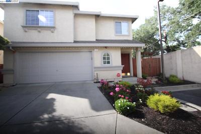 Walnut Creek Rental For Rent: 179 Foxglove Ln