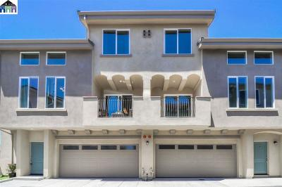 Alameda County Condo/Townhouse New: 21061 Estancia Common #6