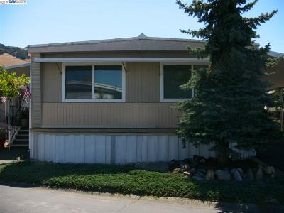 Fremont Mobile Home New: 711 Old Canyon Road