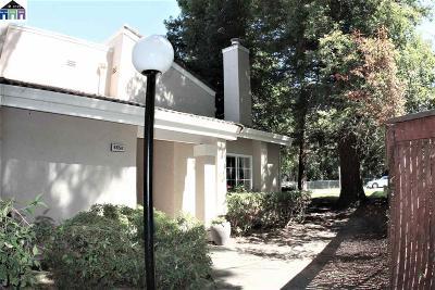 Pleasanton Condo/Townhouse New: 685 Palomino Dr #B