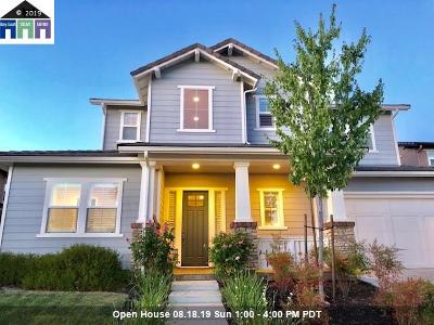Livermore Single Family Home New: 270 Prairie Wy