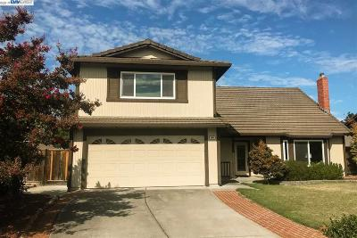 Pleasanton CA Single Family Home New: $1,175,000