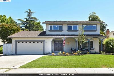 Pleasanton CA Single Family Home New: $1,319,000