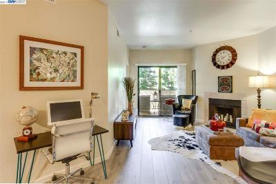 Hayward Condo/Townhouse New: 25938 Kay Ave #113