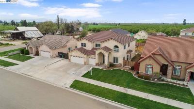 Ripon Single Family Home For Sale: 671 Kelcie Dr