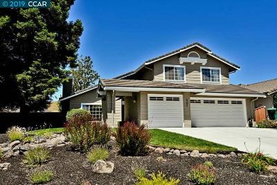 San Ramon Single Family Home New: 505 Marble Canyon Ln