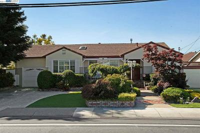 San Lorenzo Single Family Home New: 970 Paseo Grande