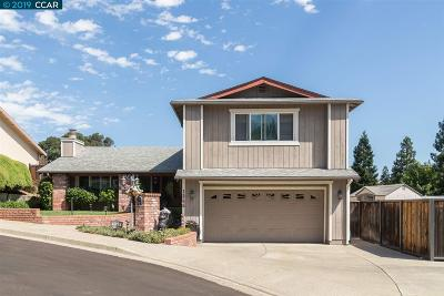 Martinez Single Family Home New: 1265 Hatchwood Ct