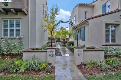 San Ramon Rental For Rent: 9804 Belladonna Drive