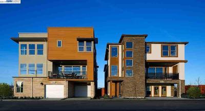 Dublin Single Family Home For Sale: 6037 Galena Court