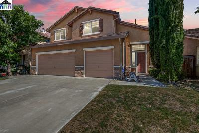 Lathrop Single Family Home For Sale: 891 Englewood Way